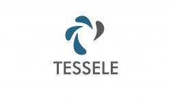 Tessele Consultants